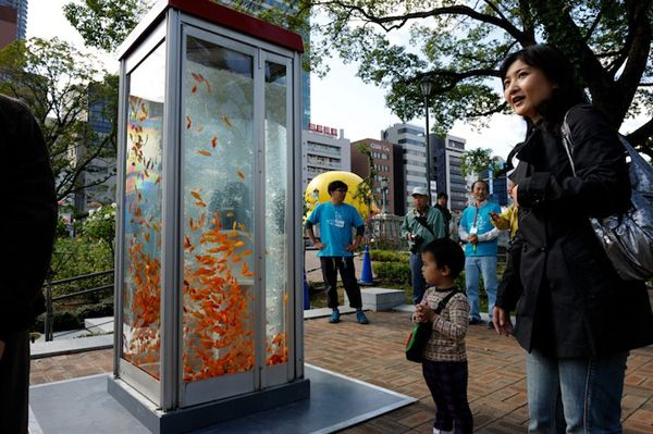 kingyobu fish tank phone booth