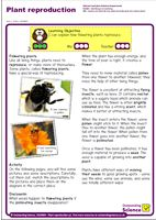 Outstanding Science Year 2 - Plants | Plant reproduction