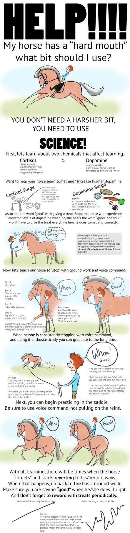 I've been getting annoyed by all the posts on facebook horse groups from people who say they can't stop their horse, their horse is too strong, and wanting to know what kind of bit they should use....