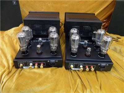 Canary 339 MK II Monoblocks 300B PP Valve Amps - 50 Watts, used for sale, secondhand