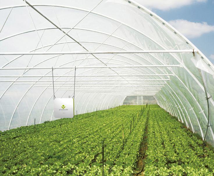 【IoT×農業】「e-kakashi」が変える農業の姿●特集「IoTの現在」 WD ONLINE