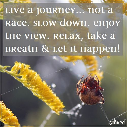 Marvelous U201cLive A Journey Not A Race. Slow Down. Enjoy The View. Relax