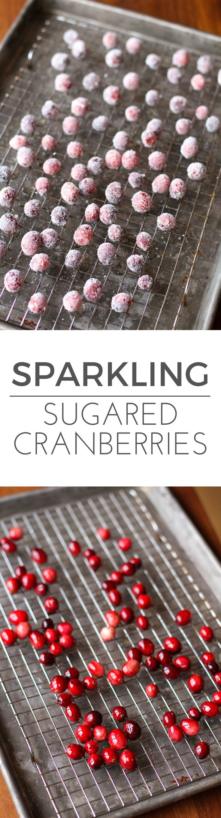 Sparkling Sugared Cranberries -- you'll love these little sweet and sour fresh cranberries dipped in simple syrup and rolled in sugar. They're an elegant way to dress up baked goods for the holiday season (and tasty to eat as is)! | via @unsophisticook on unsophisticook.com
