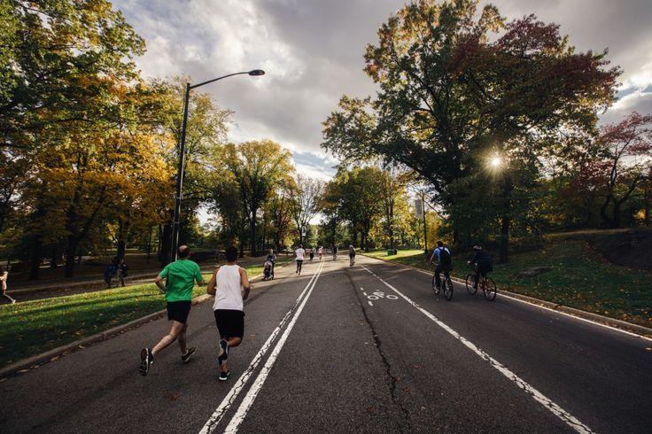 Alert: Long Distance Running Can Make Your Brain Shrink, Study Finds