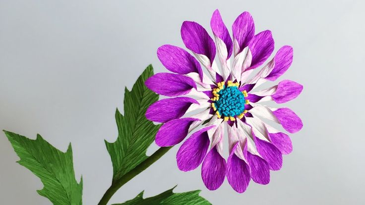 ABC TV | How To Make African Daisies Paper Flower From Crepe Paper - Cra...