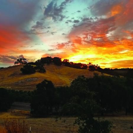 Paso Robles, CA: Sunset over Whalebone Vineyard.