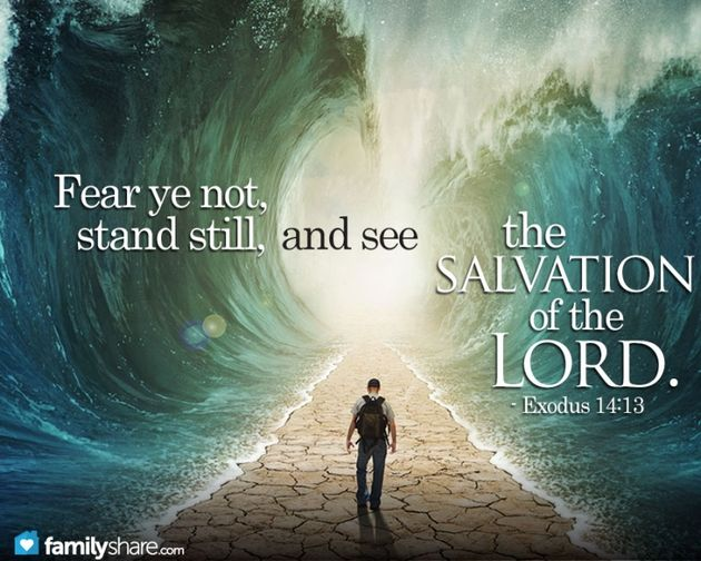 "Exodus 14:13-14 (ESV)  13 And Moses said to the people, ""Fear not, stand firm, and see the salvation of the Lord, which he will work for you today. For the Egyptians whom you see today, you shall never see again. 14 The Lord will fight for you, and you have only to be silent."