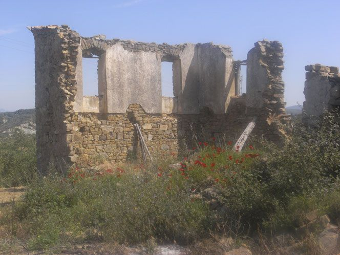 Ruin.jpg 664×498 pixels