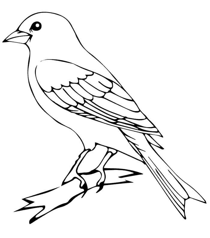 Birds On A Wire Something To Craft About Bird Stencil Bird Silhouette Pallet Art