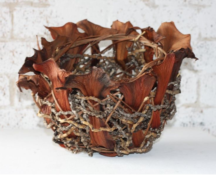 Contemporary Basketry: Palm by Lissa-Jane DeSailles