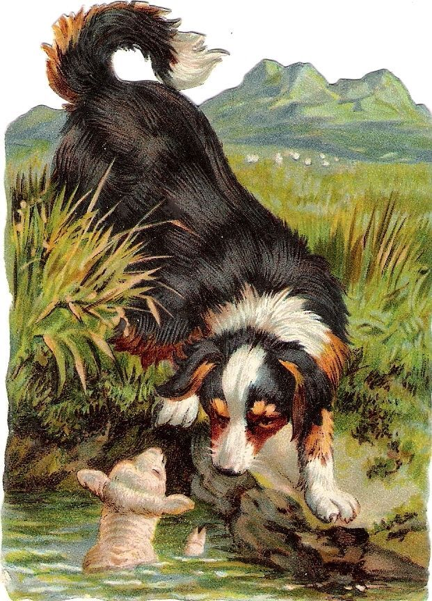 Oblaten Glanzbild scrap die cut chromo Rettungs Hund Schaf sheep rescue dog chie
