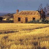 Elbow Hill- Eyre Peninsula, South Australia