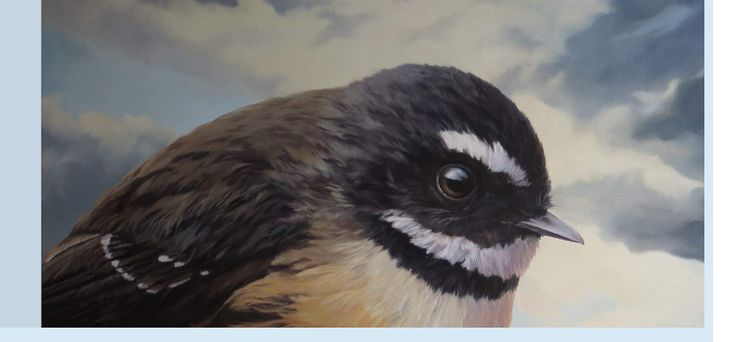 Piwakawaka - The New Zealand Fantail from an exhibition by Jane Sinclair Bird Song