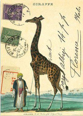 Vintage decorated postcard