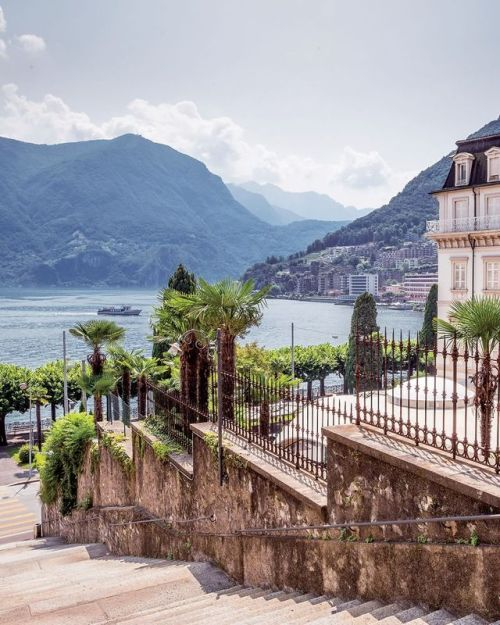 Palm trees in #Switzerland? But of course! Lake Lugano is...