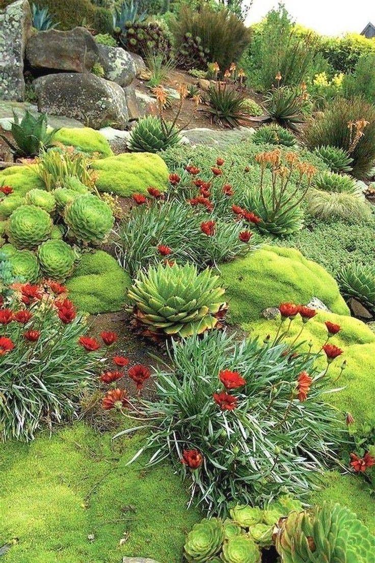 6+ Uplifting Garden Design Zone 9 Ideas, # ...