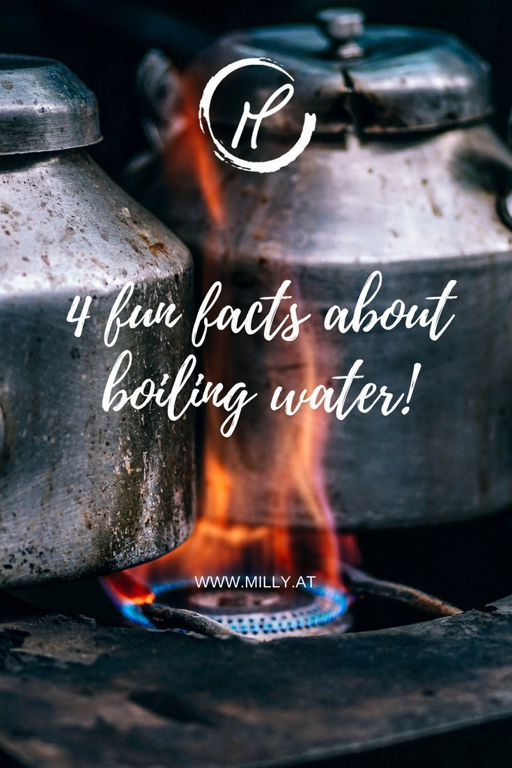 Did you know these facts about boiling water? Science is an integral part of our every day lives, so check out the bubbly biochemist's new blog post on Milly's Melting Pot!