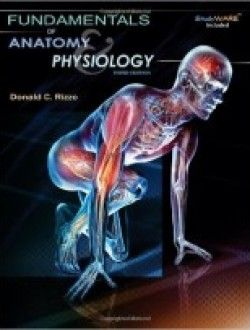54 best anatomy books online images on pinterest books online fundamentals of anatomy and physiology texas science free ebook online fandeluxe Choice Image