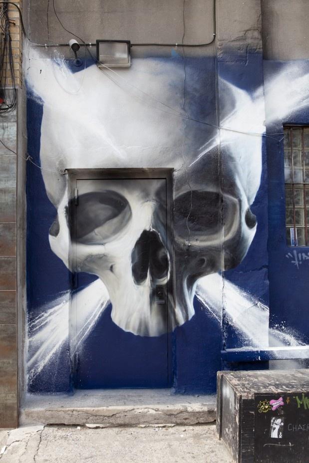 Skull & crossbones Door