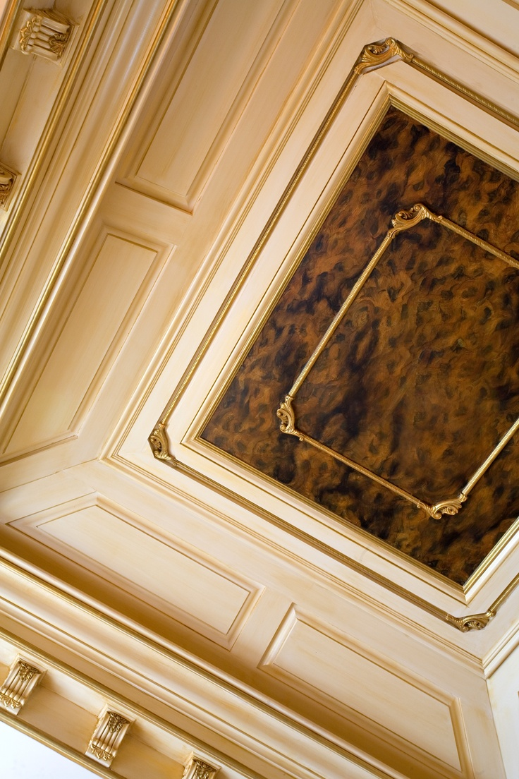17 Best Images About Beautiful Painted Tray Ceilings On