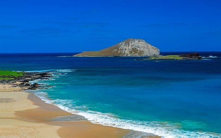 Hämta bilder Oahu, Stilla Havet, beach, kusten, Hawaii, USA