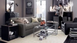 17 Best Images About New York Theme Living Room On