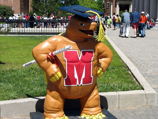 Testudo the terrapin and virgin