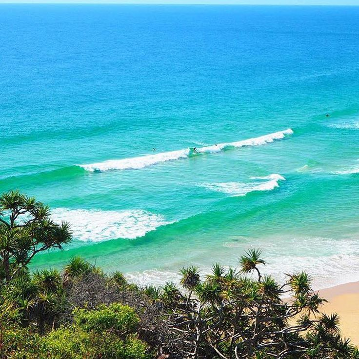 The coast is clear at Sunshine Beach!  This stunning beach stretches for 15 kilometres and is very popular with surfers, particularly up towards the headland.