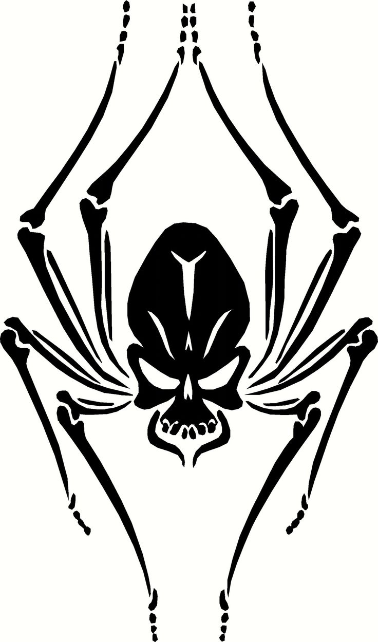 Black Widow Skull Spider Vinyl Decal Graphic - Choose your Color and Size