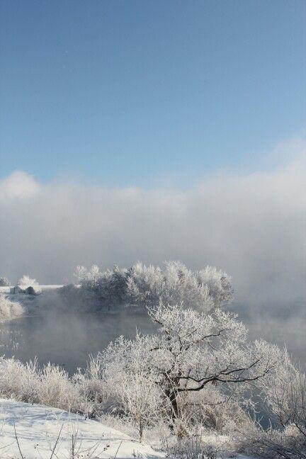 농원의 겨울  #성은농원