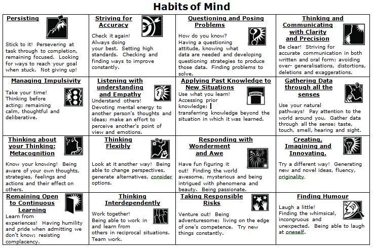 "Habits of Mind and the Common Core  ""Habits of Mind are the characteristics of what intelligent people do when they are confronted with problems, the resolutions of which are not immediately apparent."" (Costa)"