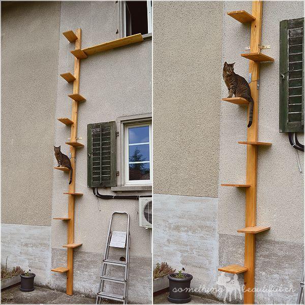 die besten 25 katzentreppe balkon ideen auf pinterest katzentreppe kratzbaum und katzenb ume. Black Bedroom Furniture Sets. Home Design Ideas