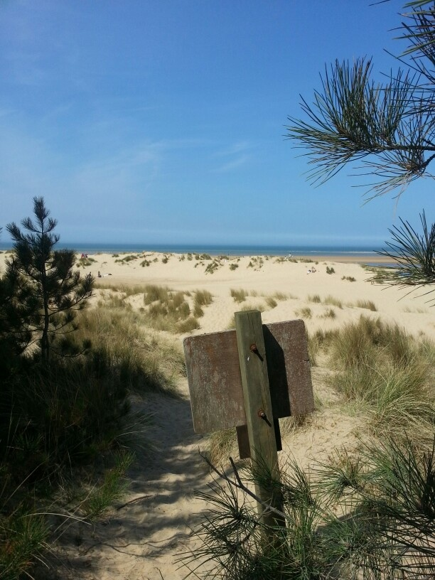 Wells beach Norfolk-wonderful sand dunes, pine tress, clean white sand-beautiful. The kids & adults alike will love it. No wonder its been voted one of the best beaches in UK