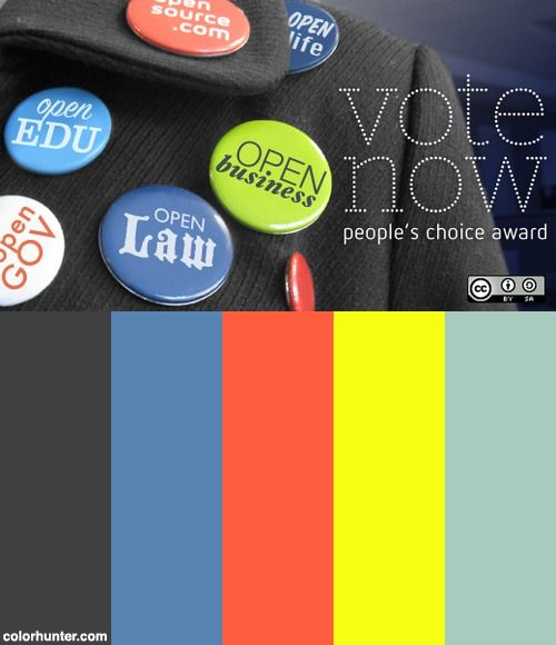 Vote For The 2010 People's Choice Award Color Scheme
