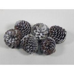 COCO PIÑA PINTADO INSIGNE (6 uds) GRANDE #natural #madera #materiales #decoración #pinas #navidad