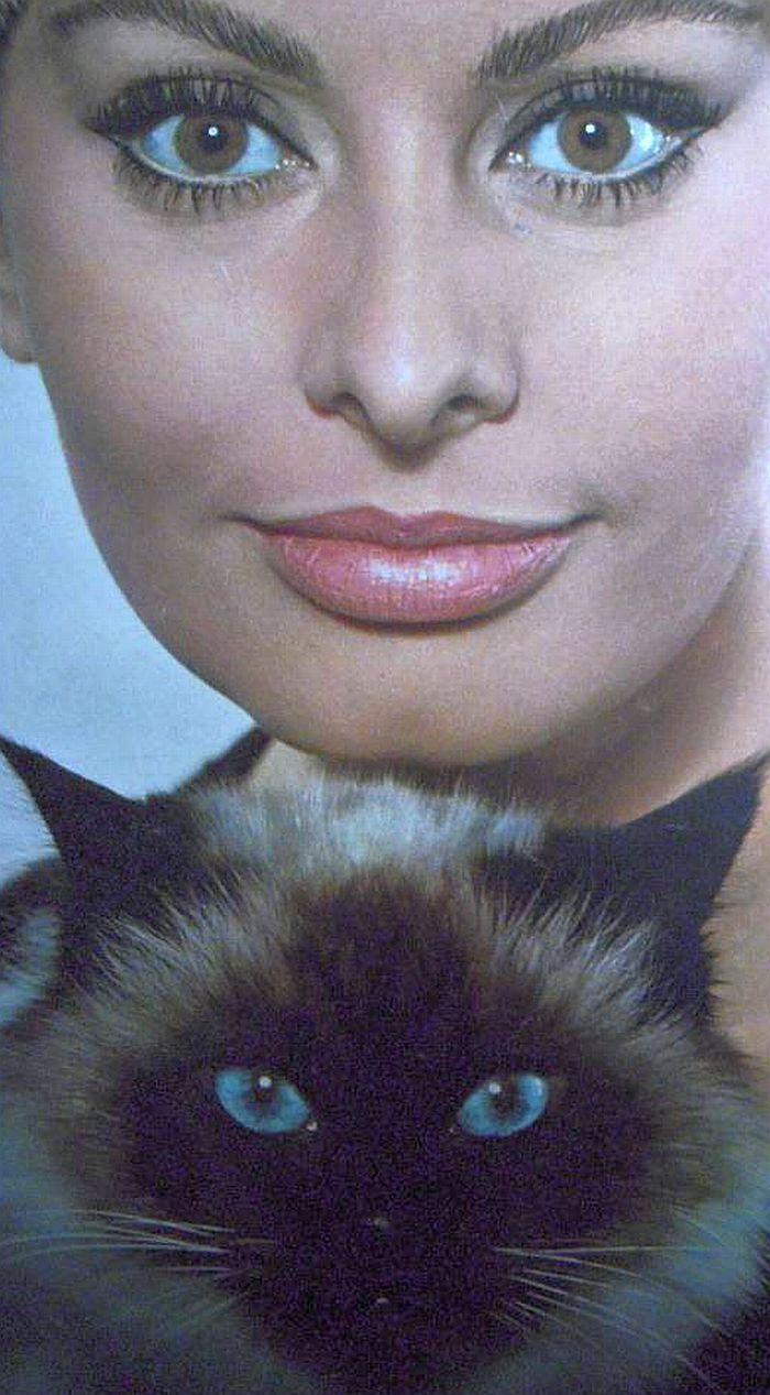 Sophia Loren & her cat, italianbeauty Classic Movie Hub