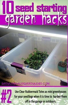 These are all great gardening tips. Things like keeping soil in a big Rubbermaid tub for easy mixing (yes, you want your soil to be damp before you pot it). Also using lids as trays for seedlings. You won't want to miss the rest of these 10 Seed Starting Garden Hacks! These DIY tips and ideas will help you be the best gardener around.