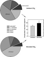 Biomass and toxicity responses of poison ivy (Toxicodendron radicans) to elevated atmospheric CO2 on PNAS