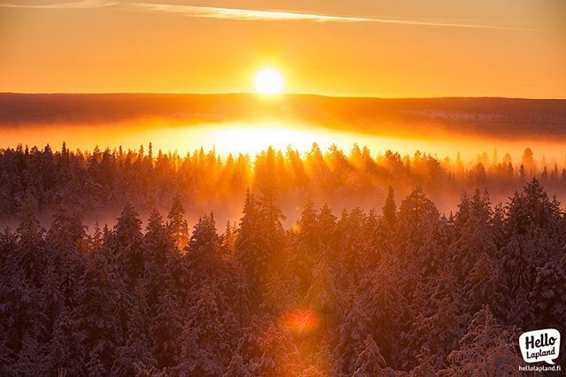 This is how the middle of the day looks at the #ArcticCircle – divine! Taken today in #Rovaniemi #Lapland #Finland #visitfinlandjp #visitlapland #visitfinland #visitrovaniemi #arcticsunrise  #northerneurope #neverstopexploring #thisisfinland #ourfinland #onlyinlapland #aboveordinary #treeporn #verycold #verycoldday #рованиеми #лапландия #финляндия #polarnightmagic