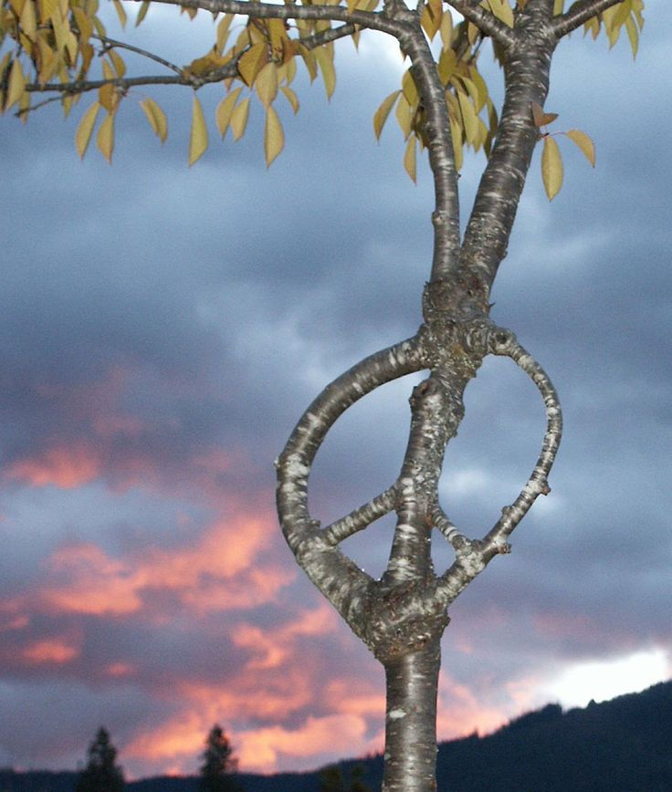 Peace symbols - Wikipedia