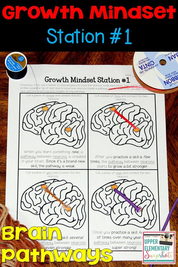 Let's learn about our brain! (Preschool Science Activity ...