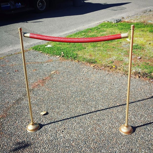 Wendy's EASY Red Carpet Stanchions
