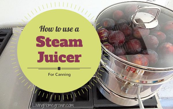 Learn the pros and cons of using a steam juicer in canning and preserving.