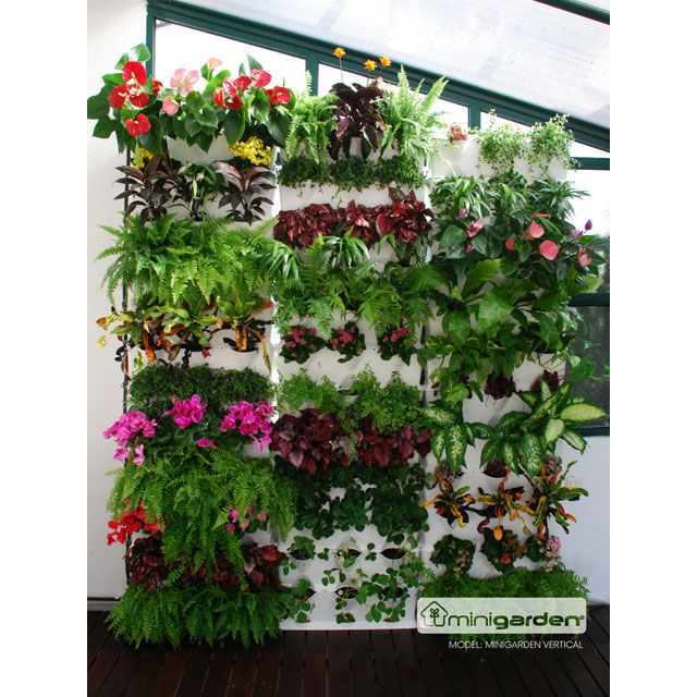 bygg din egna gröna vägg eller skapa din egna vertikala trädgård. Minigarden Vertical är ett enkelt och lättskött modulsysystem