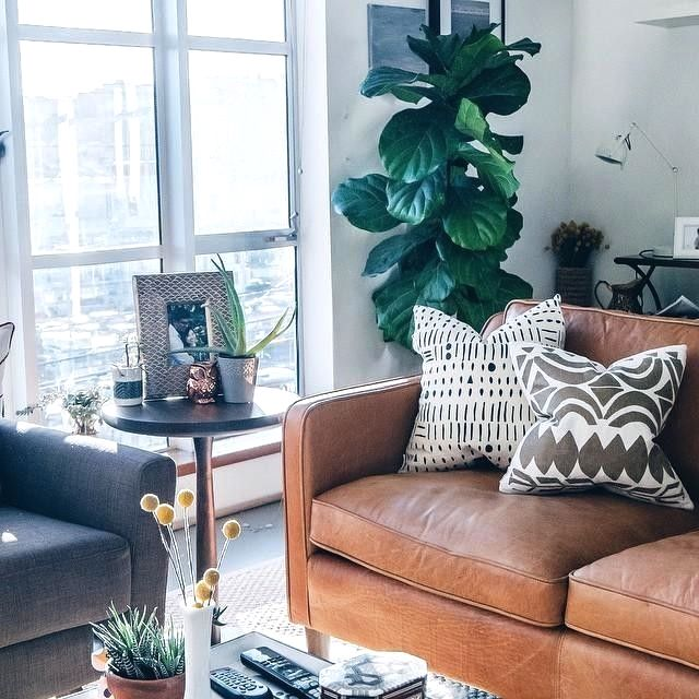 Pin By Claire Pittsley On Choosing A Leather Sofa Living Room Leather Leather Couches Living Room Brown Leather Living Room Furniture
