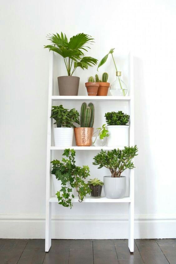 workspace inspiration | planter shelf / white shelving for home office