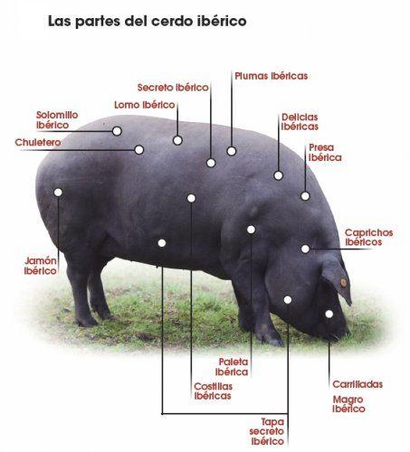 Semana de los Productos del #Cerdo #Ibérico | Eventos Gastronómicos