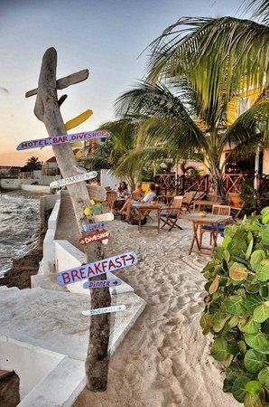 Photos of Scuba Lodge Restaurant, Willemstad - Restaurant Images - TripAdvisor