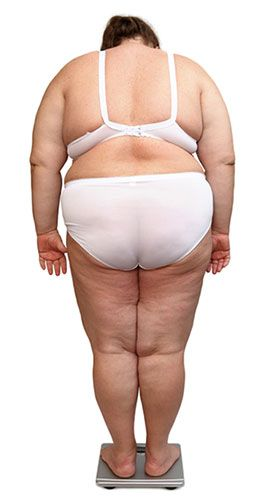 Image Result For Healthy Tips Lose Weight