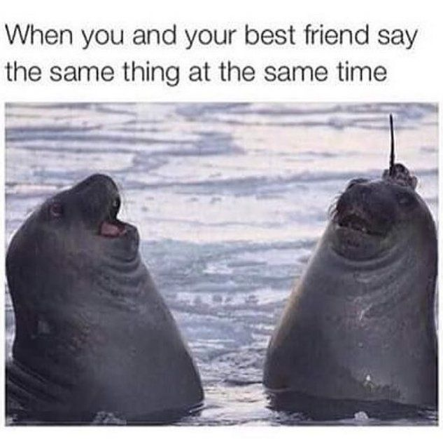 actual representation of me and my best friend. we do it so often its scary XD <3 #loveyou